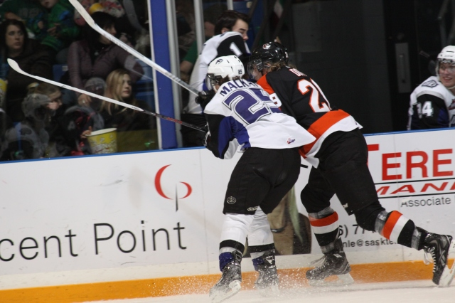 Zac Mackay battles against the Tigers (Photo by Darwin Knelsen for scbroncos.com)